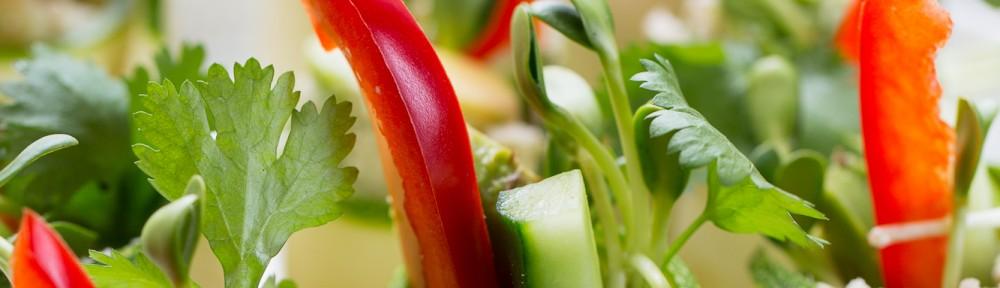 Veganrecept med hälsan i fokus